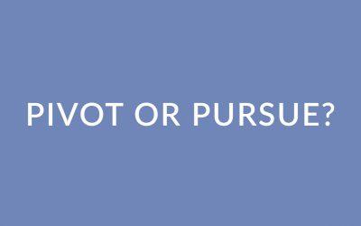 Pivot or Pursue: Reflection Questions