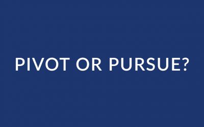 Pivot or Pursue Reflection Questions
